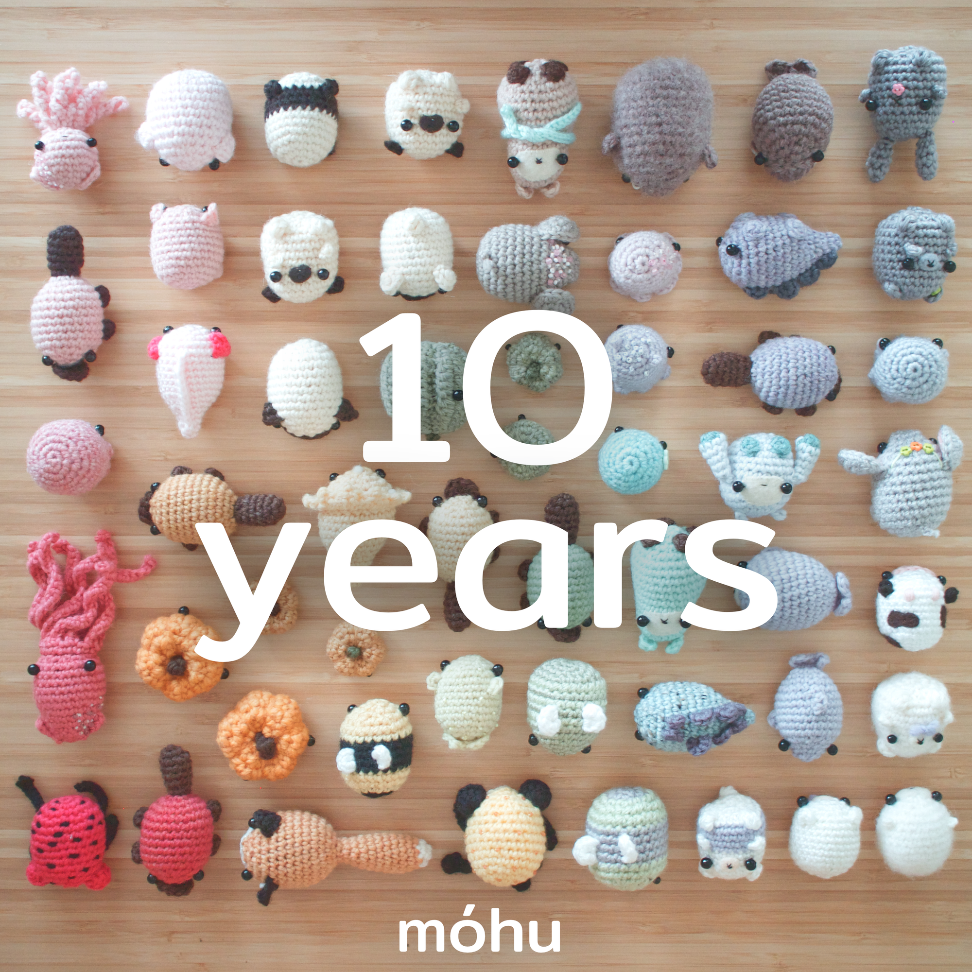 Mohu Store is 10 years old